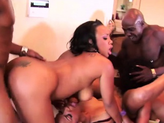 Big pest black chicks enjoying a lively on orgy