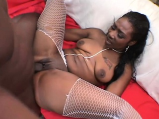 Fat spoils euphonic babe in fishnets sucks coupled with fucks a boastfully black dick