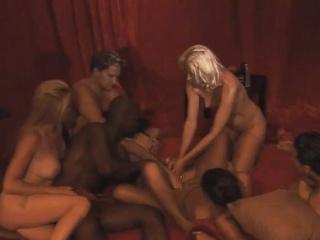Swinger Troop Orgy Group Interracial Dildo Toys