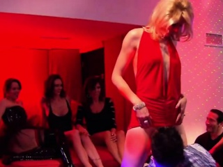 Swingers group sexual connection and stripper pole